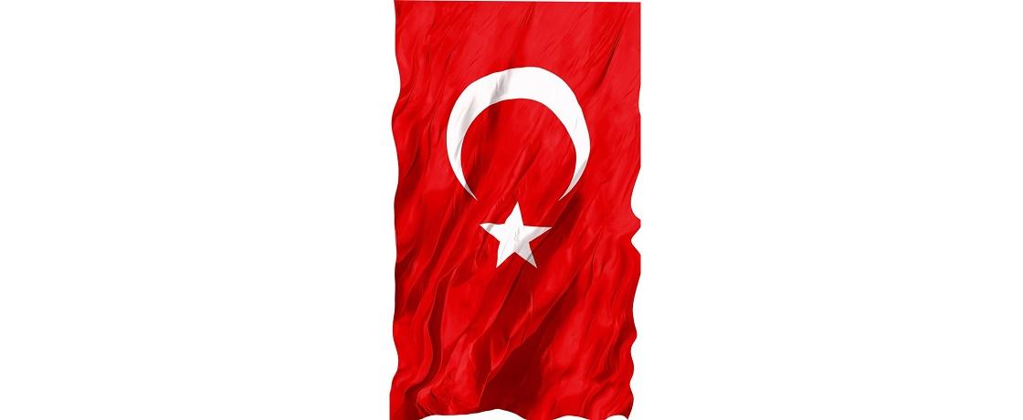YÜCE TÜRK Bayrağı, TÜRK DİYETİSYENLER