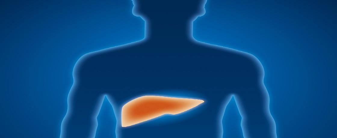 hepatit, karaciğer