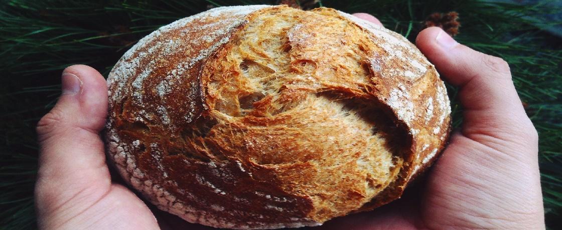Ekşi mayalı ekmek, Ekşi mayalı ekmek yapımı, Ekşi mayalı ekmek kalorisi, Ekşi mayalı ekmek zayıflatır mı, Ekşi mayalı ekmek yararları, Ekşi mayalı ekmek zararları, Ekşi mayalı ekmek diyeti, Ekşi mayalı ekmek hakkında bilgi, Ekşi mayalı ekmek nasıl yapılır, diyetisyen şenol yıldız, eskişehir diyetisyen şenol yıldız