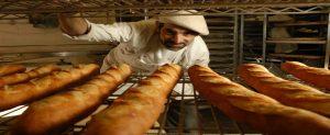 ekmek zararlı mı, ekmek yararlı mı, diyette ekmek olur mu, ekmeği kesmek zayıflatır mı