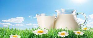sütçü imam, sütlaç, sütyen, süt filmi, süt çeşitleri, süt alerjisi, süt gaz yapar mı, sütün faydaları, sütün yararları, süt kalorisi