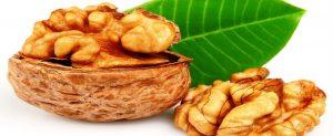 ceviz diyet kalori