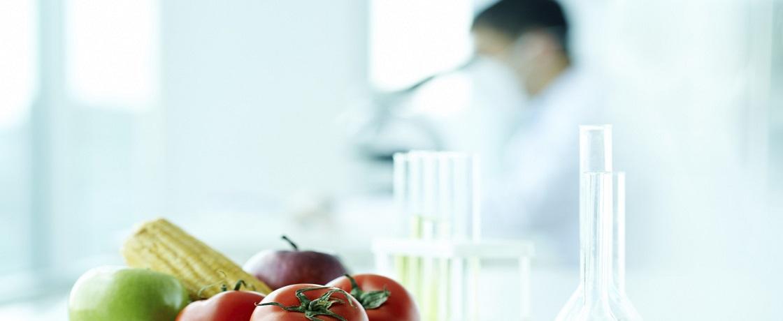 diyetisyen iş ilanları, beslenme ve diyetetik alımları, diyetisyen iş ilanı 2017