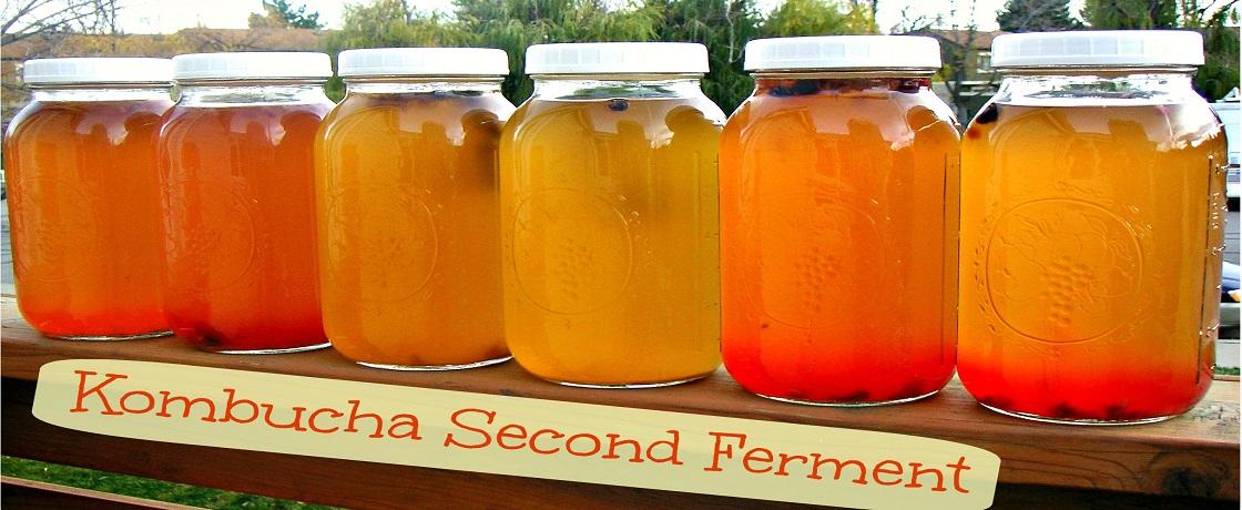kombucha, kombucha nedir, kombucha çay, fermente çay, fermente çayın adı