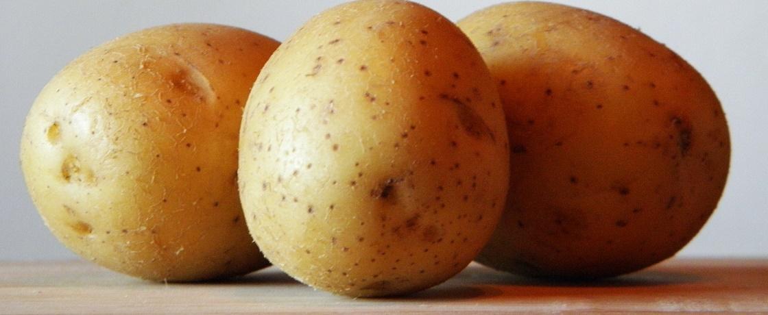 patates, patates diyeti