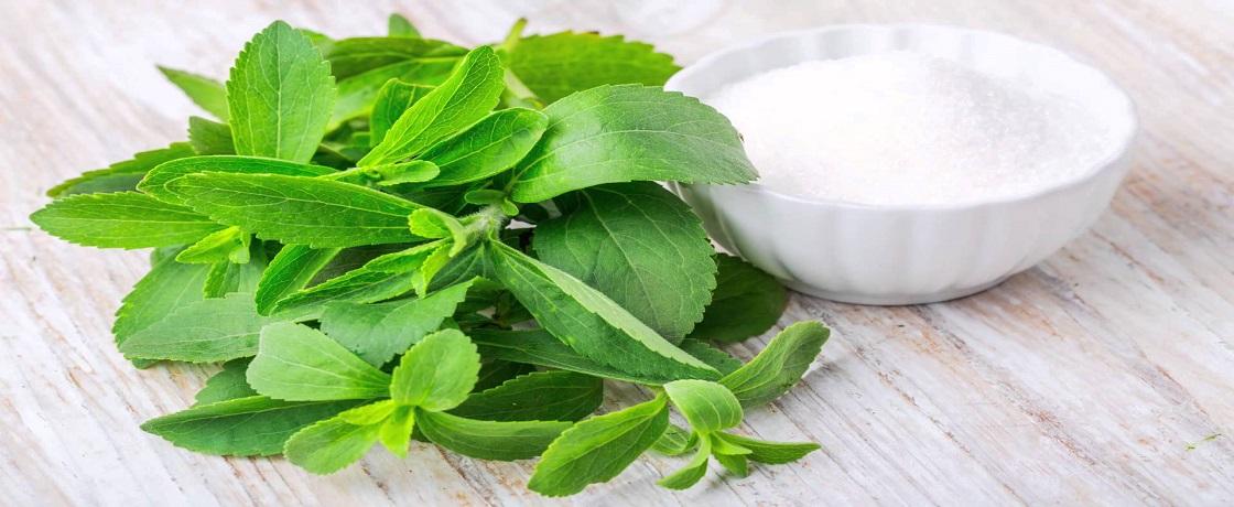 stevia diyeti, diyette stevia, stevya, stevya zayıflatır mı, stevia kilo verdirir mi, migros stevia, ballı yaprak, tatlı ot , stevia, nustevia, doğal tatlandırıcı, doğala özdeş tatlandırıcı,