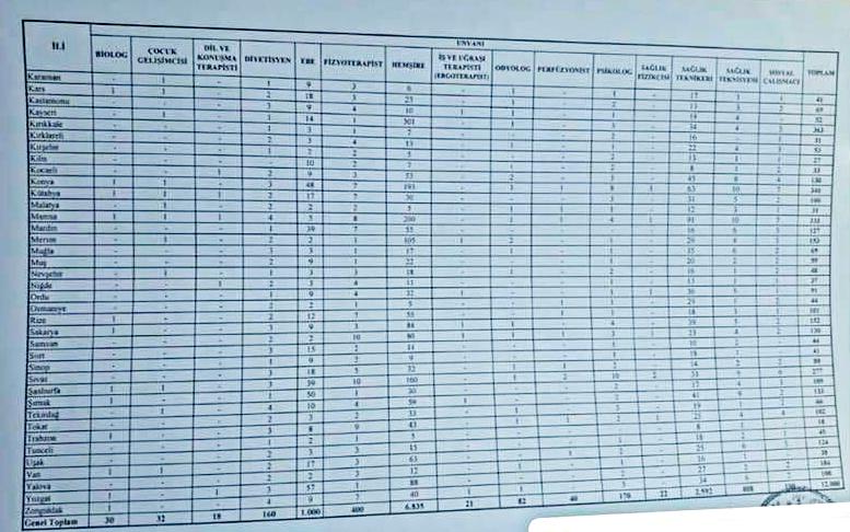 Sağlık Bakanlığı atama branş sayıları 2019 (1)