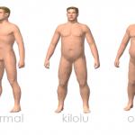 normal, kilolu ve obez adam