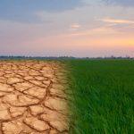 İklim değişikliği, İklim değişikliği diyet, İklim değişikliği beslenme, İklim değişikliği gıda, İklim değişikliği besin, diyetisyen şenol yıldız, eskişehir diyetisyen şenol yıldız, eskişehir belediyesi diyetisyen şenol yıldız, online diyet diyetisyen