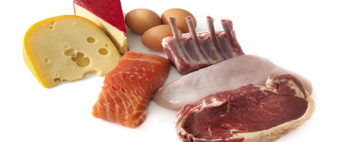 bol proteinli beslenme spor vücut fitness