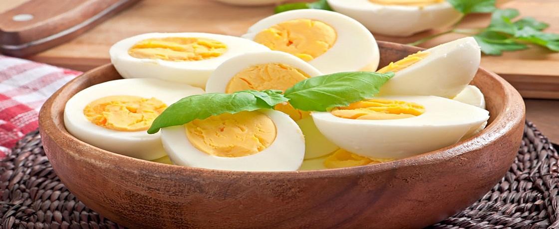 Yumurta Sarisi Gercek Diyetisyenler Sitesi