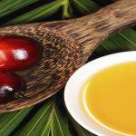 palmiye yağı, palm yağı, kanser