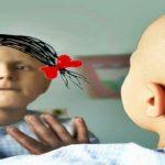 kanser, kanserde beslenme, onkoloji