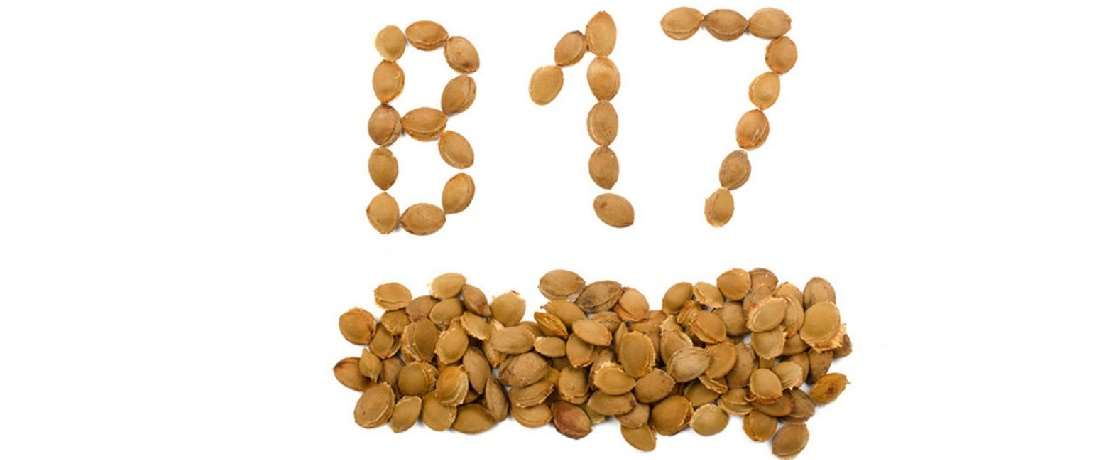 b17 vitamini, vitamin b 17