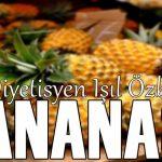 ananas (IŞIL ÖZBAY)