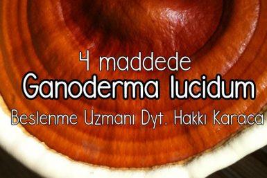 reishi mantarı ganoderma lucidum lingzhi (3)