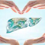 hepatit, karaciğer, siroz (5)